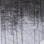 Erasure: New Drawings by Deirdre Macleod