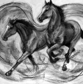 Drawing Horses Workshop