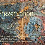 Preservation by Carmen Carmeli